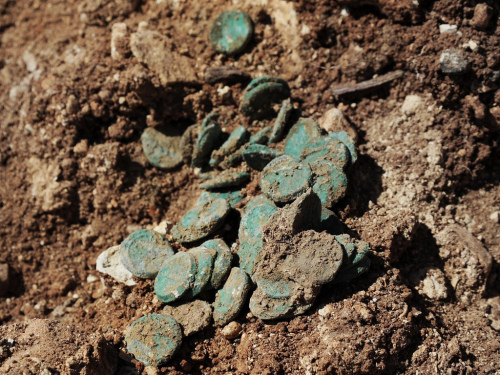 Coin hoard as it was found in the excavation. Photo Vladimir Nuhin, IAA.
