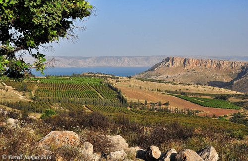 View of Mount Arbel and the Sea of Galilee from the NW. Photo by Ferrell Jenkins.